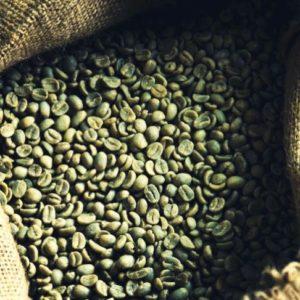 Coffee Bean Lifter